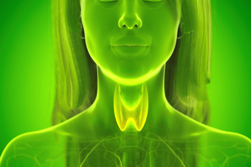 Autoimmune Thyroid Disease - Functional Medicine Approach