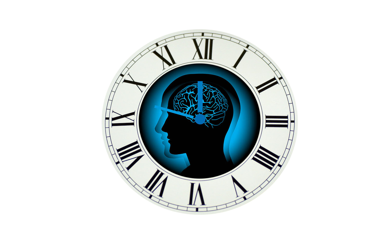 ChronoBiology - Understanding Chronotype Circadian Rhythms