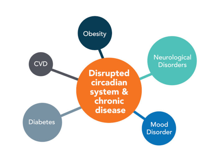 Impacts of Chronobiology on Health and Disease
